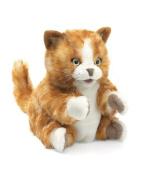 Orange Tabby Kitten Hand Puppet by Folkmanis - 2845