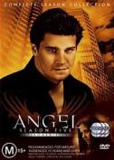 Angel: Season 5 [Region 4]