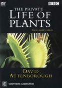 Private Life Of Plants The David Attenborough