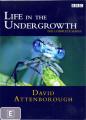 Life In The Undergrowth [Region 4]