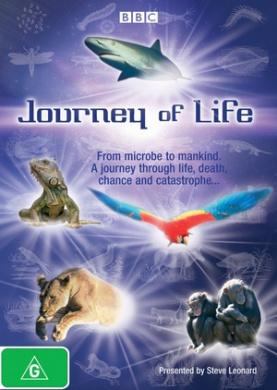 BBC Documentary - Journey of Life 5 of 5 - Human Life ...