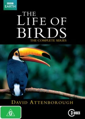 The Life of Birds: The Complete Series (David Attenborough)