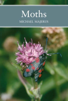 Moths (Collins New Naturalist), MEN Majerus - Shop Online for Books in NZ ...