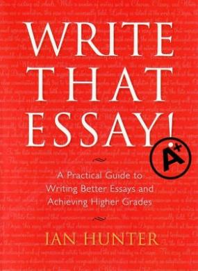an essay on a book