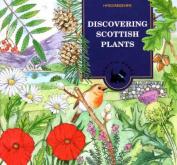 Discovering Scottish Plants
