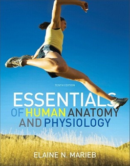 Human Anatomy Physiology Book Online On And With Essentials Of Interactive