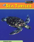 Sea Turtles (Sea Creatures S.)