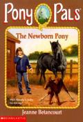 Pony Pals #28 the Newborn Pony