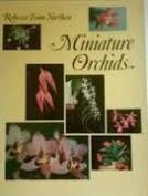Miniature Orchids