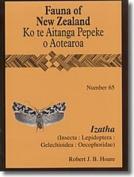 Izatha: (Insecta: Lepidoptera: Gelechioidea