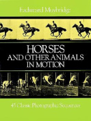 Horses and Animals in Motion
