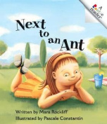 Next to an Ant