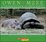 Owen y Mzee [Spanish]