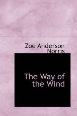 the way of the wind essay Solar power essay by lauren bradshaw they are wind power in some way they each use the sun the first type is wind power.