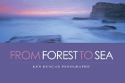 From Forest to Sea