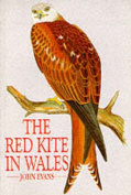 The Red Kite in Wales