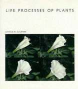 Life Processes of Plants