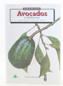 Growing Avocadoes in Melbourne and Other Similar Temperate Areas