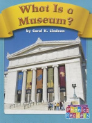 What Is a Museum?