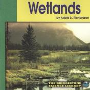 Wetlands (Ecosystems