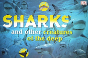 Sharks and Other Creatures of the Deep