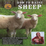 How to Raise Sheep