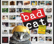 Bad Cat Wall Calendar