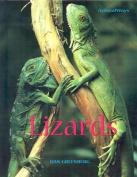 Lizards (Animalways)