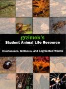 Segmented Worms, Crustaceans and Molluscs