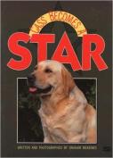 Cass Becomes a Star