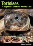 Tortoises Beginners GT Tortoise Care