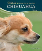 Chihuahua (Doglife