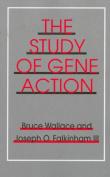 Study of Gene Action