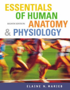 Essentials Human Anatomy Physi