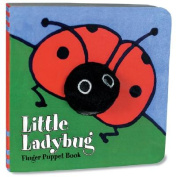 Little Labybug