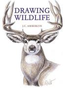 Drawing Wildlife