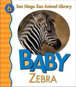 Baby Zebra [Board book]