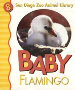 Baby Flamingo [Board book]