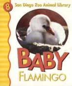 Baby Flamingo San Diego Zoo [Board Book]
