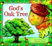 God's Oak Tree
