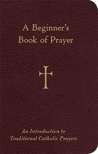 An introduction to the history of the catholic church