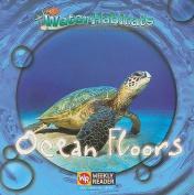 Ocean Floors (Water Habitats)