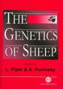 The Genetics of Sheep