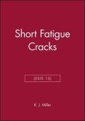 Short Fatigue Cracks