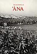 Excavatons at 'Ana