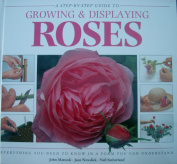 Creative Step by Step Guide to Growing Display Roses