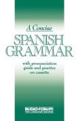 Concise Spanish Grammar [Spanish]