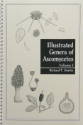 Illustrated Genera of Ascomycetes