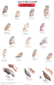 Mac's Field Guide to North American Birds of Prey