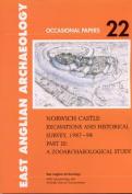 Norwich Castle: Excavations and Historical Survey 1987-1998